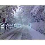 『大雪の水曜日』の画像