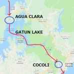 コンテナ船クルーズと貨物船の旅