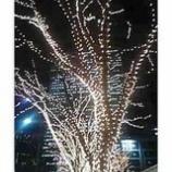『新宿副都心の夜』の画像