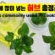 ハーブの種類を韓国語で!
