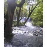 『銚子大滝を遠くに』の画像