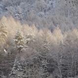 『冬の光景』の画像