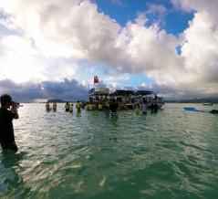 2019ハワイ旅 - キャプテンブルース天国の海 サンドバーでシュノーケルとウミガメ