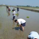『もうすぐ収穫祭!』の画像