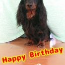 Happy Birthday アース ♪