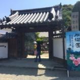 『【奈良】當麻寺 護念院の御朱印』の画像