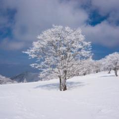明神岳登山