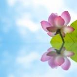 『坐禅中の呼吸は長いのが良いのか 井上老師 神戸禅会01/2017』の画像