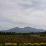 『薫風の高原』の画像