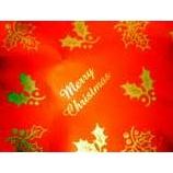 『サンタからメリークリスマス』の画像
