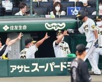 阪神矢野監督、佐藤輝明は「プラスアルファを高めていくところ」