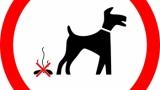 【悲報】ワイニート、うんこ中に母親から犬の糞が入った袋をぶち込まれるwww