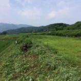『田植えから2カ月・・・草との戦い!そして出穂』の画像