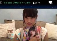 【SHOWROOM】渋谷凪咲の家のネコ ワロタwwww