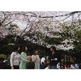 『2007.4.1.復活そしてお花見!』の画像