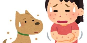 友人が犬を飼い始めたと聞いて、私も犬大好きなので遊びに行ったらまさかのアレルギー反応が出てしまい…