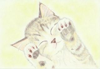 【画像あり】ワイの猫www