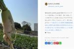 新発見もたくさん!気になってた私市駅前の『私市さんちの野菜』インスタグラムができてる!