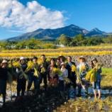 『今年最初の稲刈り』の画像
