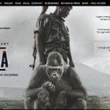 『命をかけてゴリラを守る人たち』の画像