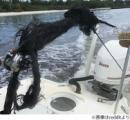 雷に打たれた釣り竿が壮絶すぎると話題に 繊維一本一本が黒焦げに【画像】