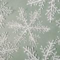 1936年3月12日は、「世界で初めて人工雪の結晶作成記念日」