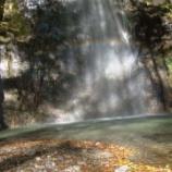 『【登山】奥多摩の人気山「川乗山」を登ってきた』の画像