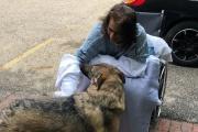 【米国】飼い犬になめられ感染症発症、両手両脚を切断 米女性