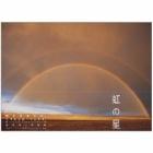 『虹の星』の画像