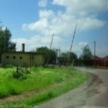 『ハンガリー旅行記29 大平原をのんびり馬車で移動、プスタの牧場見学で七面鳥やマンガリッツァ豚を見る』の画像