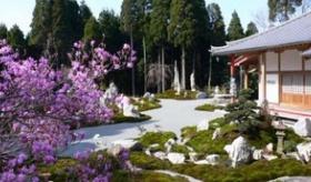 【日本の旅】    九州・鹿児島の 外国人も 歓迎なお寺 を紹介するよ!   海外の反応