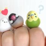かわいい小鳥さんフィギュアと指輪が合体「ことりんぐ」になった!ガチャに登場~
