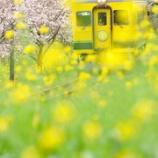 『写真展『鉄道でめぐる四季』を11月11日より開催』の画像