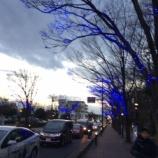 『上戸田イルミネーション・戸田市こどもの国周辺地域イルミネーション 来期までさようなら!』の画像