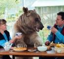 【速報】ロシアの夫婦 巨大な熊と共に生活をしている様子がコレ グリズリーデカすぎワロタ