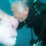 『人と魚の友情:25年間ほぼ毎日デート』の画像
