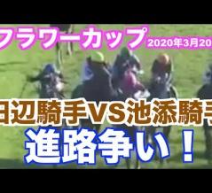 【19】 阪神大賞典 & スプリングS 【2020】
