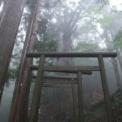 【満員となりました】7/19〜20 熊野三山・玉置神社&イルカさん ツアー(特別アチューメント付き)