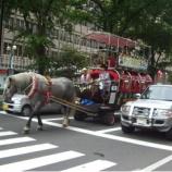 『札幌市街の観光馬車』の画像