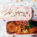 『アメリカdeお弁当㉒』の画像