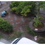 『沖縄営業所 地域活動』の画像