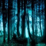 『【心から恐怖した体験談】怖い夢を自在に見る方法を試してみた』の画像