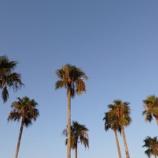 『瀬戸内海までドライブ! アメリカ西海岸のような青空、ビーチの景色は最高!! 』の画像