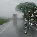 『皐月の嵐』の画像