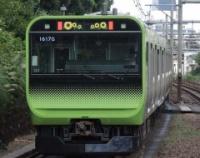 """『8月は""""ひまわり""""だった山手線E235系と,中央・総武緩行線E231-500と…』の画像"""