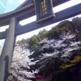 『お花日和』の画像