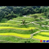 『いつか行きたい日本の名所 岩首昇竜棚田』の画像