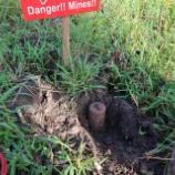 『対人地雷・不発弾の爆破』の画像