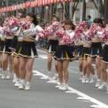 第18回湘南台ファンタジア2016 その18(明治学院大学応援団チアガール)
