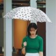 【画像】zozotownの傘のモデルがむっちゃいいんやがwwwwwwwwwww
